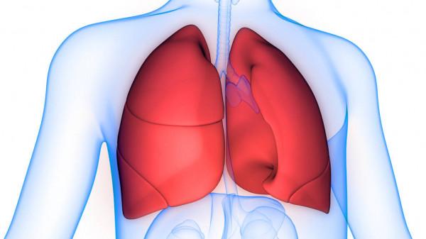 5 najczęstszych chorób układu oddechowego